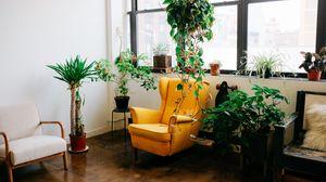 Превью обои комната, мебель, интерьер, цветы, кресло, окно
