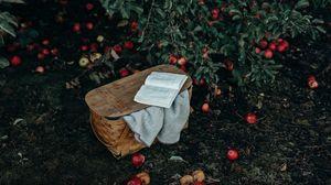 Превью обои корзина, книга, яблоки, урожай