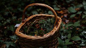 Превью обои корзина, плетеный, ягоды, ветки, природа