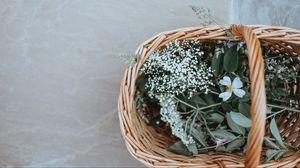 Превью обои корзина, цветы, трава