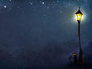 Превью обои кошки, ночь, фонарь