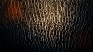 Превью обои кожа, змея, текстура, фон, тень