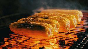 Превью обои кукуруза, початки, гриль, угли, пар