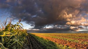 Превью обои кукуруза, поле, небо, панорама, пашня, облака, тучи