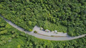 Превью обои лес, деревья, дорога, стоянка, автомобили, вид сверху