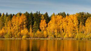 Превью обои лес, деревья, озеро, отражение, осень