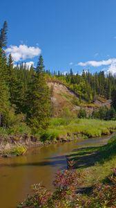 Превью обои лес, деревья, река, природа, пейзаж, зеленый