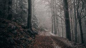 Превью обои лес, осень, туман, листва, тропинка, деревья