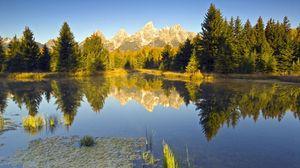 Превью обои лето, деревья, берег, река