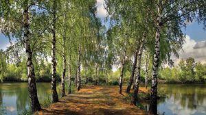 Превью обои лето, пруд, парк, берёзы, пейзаж