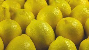 Превью обои лимон, желтый, фрукт