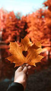 Превью обои лист, клен, осень, сердце, рука, размытость