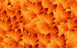 Превью обои листья, узоры, осень, текстура, клен