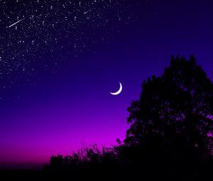 Превью обои луна, дерево, звездное небо, ночь, звезды, темный