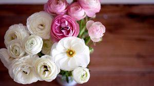 Превью обои лютики, ranunculus, букет, цветы, белые, розовые, бутоны, лепестки, ваза