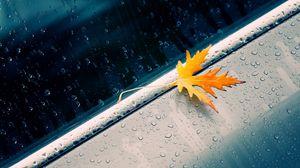 Превью обои макро, осень, лист, жёлтый, капли, машина
