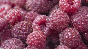 Превью обои малина, ягоды, красный, спелый, сочный