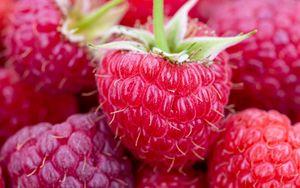 Превью обои малина, ягоды, спелый, сочный, крупный план