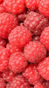 Превью обои малина, ягоды, спелый, множество