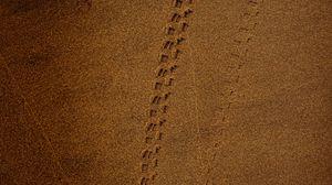 Превью обои след, песок, коричневый