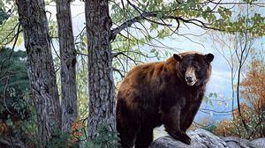 Превью обои медведь, лес, деревья