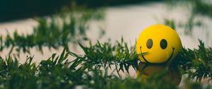 Превью обои мяч, смайл, смайлик, трава, вода