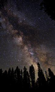 Превью обои млечный путь, звездное небо, звезды, лес, ночь, темный