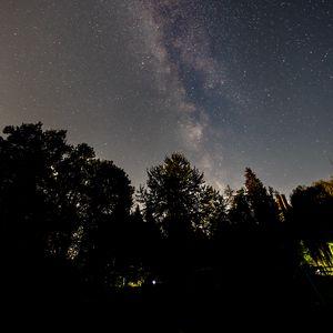 Превью обои млечный путь, звезды, деревья, ночь, небо, темный