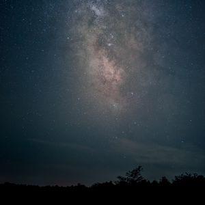 Превью обои млечный путь, звезды, небо, ночь, деревья, темный