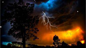 Превью обои молния, небо, деревья, очертания, звезды, непогода, ночь, оранжевый, птицы