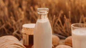 Превью обои молоко, бутылка, поле, пикник