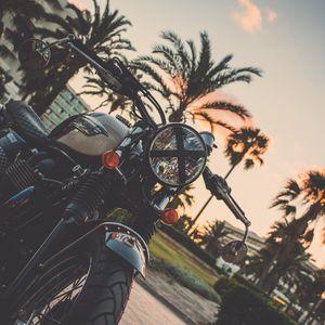 Превью обои мотоцикл, байк, пальма