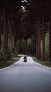 Превью обои мотоциклист, мотоцикл, дорога, лес, движение, поворот