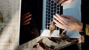 Превью обои ноутбук, руки, работа, листья, осень, эстетика