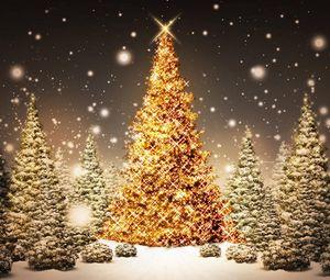 Превью обои новый год, рождество, елки, лес, открытка, снег, ночь, праздник