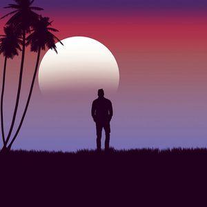 Превью обои одинокий, одиночество, луна, пальма