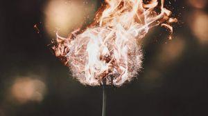 Превью обои одуванчик, огонь, пламя, пух