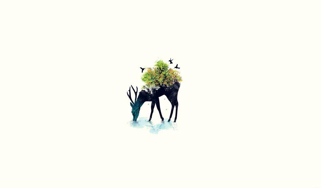 1024x600 Обои олень, минимализм, вектор, фон, природа