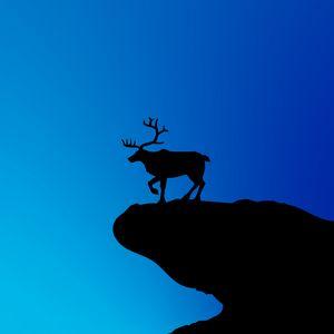 Превью обои олень, силуэт, вектор, арт, синий, темный