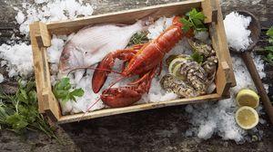 Превью обои омар, рыба, мидии, лед, морепродукты, ящик