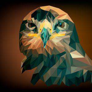 Превью обои орел, птица, геометрический, арт