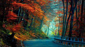 Превью обои осень, дорога, листья, деревья