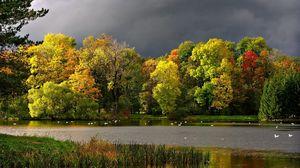 Превью обои осень, тучи, пруд, чайки, пейзаж