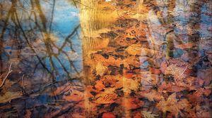 Превью обои отражение, дерево, листья, осень, ветки