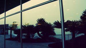 Превью обои отражение, пальмы, стекло, вечер, здание