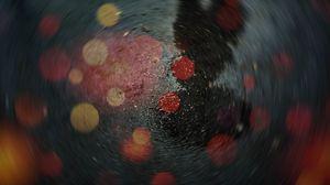Превью обои отражение, размытость, боке, эффект, фокус, мокрый