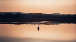 Превью обои отражение, силуэт, вода, небо, иллюзия