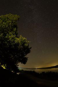 Превью обои озеро, дерево, звезды, ночь, темный