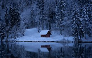 Превью обои озеро, лес, снег, зима, деревья