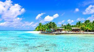 Превью обои пальмы, океан, пляж, отдых, рай